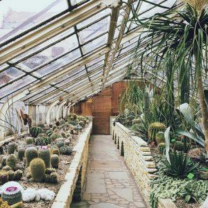 Critères de choix serre de jardin